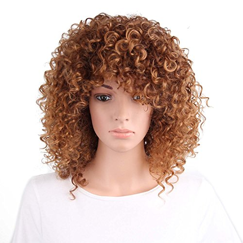 AISI HAIR Synthetic Afro Curly Hair Wigs